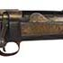Modernizing U.S. Army Service Rifle Gilded Age